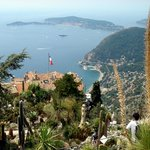 view from Eze's Exotic Garden