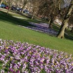 Harrogate in the sunshine