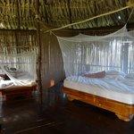 Photo de Filo del Tallo Lodge
