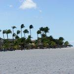 La spiaggia - Eagle Beach