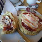 the plain scone with clotted cream and jam