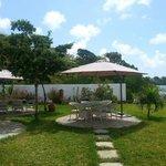 Poolside garden.