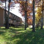 Fall at Kavanaugh's