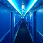 Cool hallway lighting