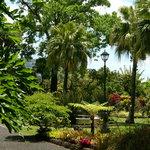 Our Beautifull Gardens