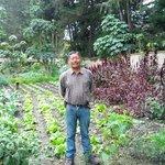 Head Gardener