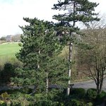 View from balcony looking at richmond hill