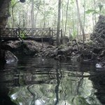 The first cenote