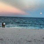 Changani beach resort