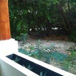"""Garden"" Tropical view room 1406"