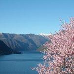 primavera sul lago