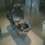 Stainless loo