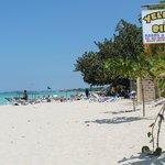 yellow bird beach