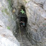 Stairs to the Cenote