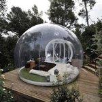 """пузырь """"nature"""" (март)"""