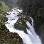 Sol Duc Falls 60 minutes to parking lot from the Lodge