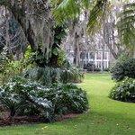 Henry P Leu Gardens
