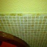 Cracked bedroom wall tile.