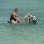Nicky swimming with the horses