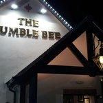 BUMBLE BEE at night