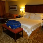 The bed and sofa area in executive room
