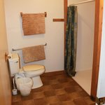Wheelchair accessible bathroom in Blue Heron cottage