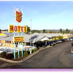 Welcome to the Robin Hood Motel