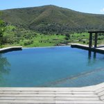 Infinity pool overlooking the reserve