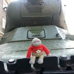 posing on the tank
