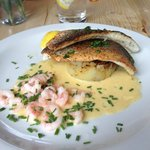 delicious sea bass with prawns in lemon cream sauce