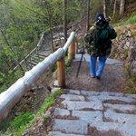 Stairs to Ellis River Falls