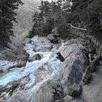 Ellis River Falls Trail