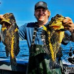 CHINA ROCKFISH ON SALTWATER EXCURSIONS