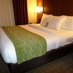 comfort suites lodging room bed