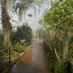 View in Botanical Garden