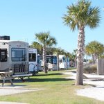 Premium Beachfront RV Sites