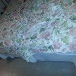 dos camas individuales para una pareja.