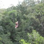 Ziplining in the jungle