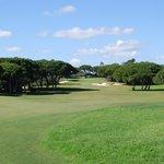 Allée du golf