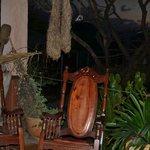 Toucan Rescue Ranch main porch area