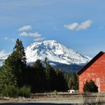 """The"" mighty Mt. Shasta"