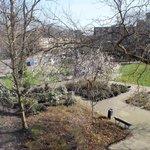Вид из окна в марте