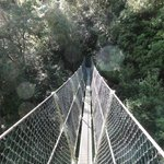 The narrow suspension bridge