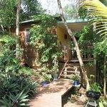 L'entrée de la cabane dans les arbres