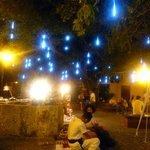 le luci della notte in plazas.diego