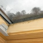 Mould on Velux