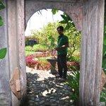 Staff Attending the Organic Garden