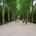 The long walk to the Chateau, I enjoyed it as part of the experience - others may not