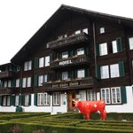 Hotel Chalet Swiss Picture !!