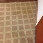Stains on carpet by door